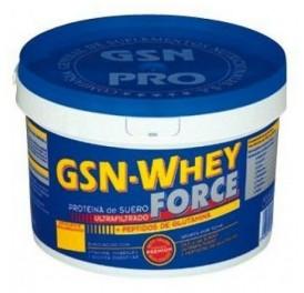 GSN WHEY FORCE CHOCO 900GR