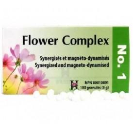 HOLISTICA FLOWER COMPLEX Nº 1 CHOQUES 100GRANULOS
