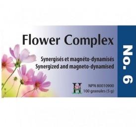 HOLISTICA FLOWER COMPLEX Nº 6  INQUIETUD 100GRANULOS
