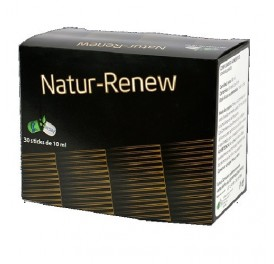 BESIBZ NATUR RENEW 30STICKS